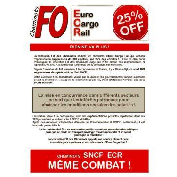 La fédération FO des Cheminots soutient les cheminots d'Euro Cargo Rail qui viennent d'apprendre la suppression de 300 emplois, soit 25% des effectifs !